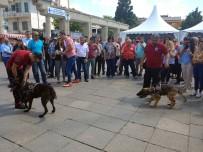 MEHMET ÖZGÜR - Narkotik Eğitim Tırı Bakırköy'de