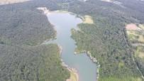 KALKAN BALIĞI - Sinop Göletlerine 35 Bin Sazan Balığı Yavrusu Bırakıldı