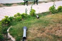 KORDON - 15 Temmuz Şehitler Parkına Çirkin Saldırı