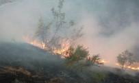 Doğanyol'daki Arazi Yangını Güçlükle Kontrol Altına Alındı