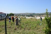 ENGELLİ ÇOCUK - Engelli Çocuklar İçin Tarımsal Çalışma Başlatıldı