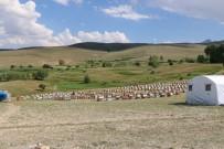 Erzincan'da Tarımsal Üretim Yapan Tesislere Ziyaret
