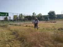 FUTBOL SAHASI - Hisarcık Futbol Sahasında Yabani Ot Temizliği