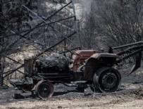 HASAR TESPİT - İzmir'deki orman yangınından geriye kalanlar