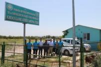 KARAOĞLANLı - Karaoğlanlı Atıksu Arıtma Tesisi Yenilendi