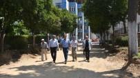 ERDEMIR - Nazilli Belediyesi 'Sevgi Yolu'nu Yeniden Düzenliyor