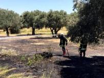 DİKKATSİZLİK - Söke'de İki Saat İçinde 3 Farklı Noktada Kuru Ot Yangını