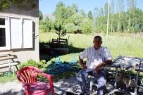 BİLİM ADAMI - Vartolu Çiftçi 48 Yıldır Gazete Biriktiriyor