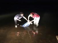 Bayburt'taki Göletlere 50 Bin Yavru Balık Bırakıldı