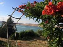 BESİ ÇİFTLİĞİ - Çuğun Barajı Çevresine Besi Çiftliği Kurulacağı İddiaları