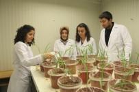 YABANCı DIL - SDÜ Ziraat Fakültesi Bir İlke İmza Atıyor