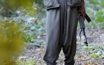 HABUR - Şırnak'ta 5 PKK'lı Teslim Oldu