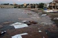 MOLDOVA - Denize Dökülen Suntaların Sebebi Belli Oldu