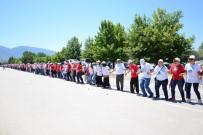 DÜNYA REKORU - Dünya Horon Rekoru Bursa'da Kırıldı