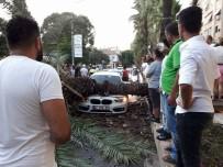 KADIN SÜRÜCÜ - Sosyal Medyadan 'Devrilecek' Diye Uyardığı Ağaç Aracın Üstüne Düştü