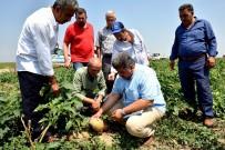 Tarım Komisyonu'ndan 'Dolu' Seferberliği