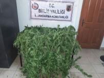 Tatvan'da Uyuşturucu Operasyonu