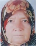 OTOPSİ SONUCU - Böğürtlen Toplamaya Giden Yaşlı Kadın Dere Yatağında Ölü Bulundu