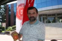 KARAHıDıR - En Güzel Armutlar Yarıştı