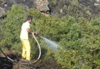 ÇUKURKÖY - Tavşanlı'daki Mesire Alanında Yangın