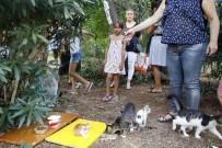 KATLIAM - Antalya'daki 'Kedi Katliamına' Site Sakinlerinden Tepki