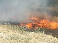 Arazi Yangını Akaryakıt İstasyonuna 20 Metre Kala Söndürüldü