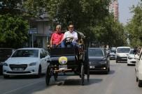 FAYTON - Başkan Sözlü'den Elektrikli Faytonla Adana Turu