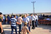 DICLE ÜNIVERSITESI - Diyarbakır'da Husumetli İki Aile Barıştırıldı