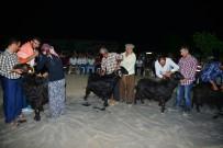 KEÇİ - Karagöl Şenliğinde Keçi Kırkma Yarışması