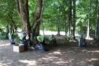 ÇEVRE KIRLILIĞI - Domaniç Ormanları Temizlendi