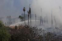 ÇAMYUVA - Kemer'da Çöp Yangını Palmiye Ağaçlarını Kül Etti