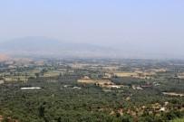 SÜT ÜRETİMİ - Küçük Menderes'te Susuzluk Tehlikesi