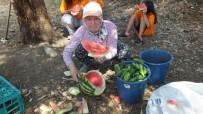 Minik Öğrenciler Teknolojiden Uzak Bahçe Çapaladı