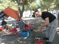İÇ SAVAŞ - Suriyeli Muhacirler Piknikte Buluştu