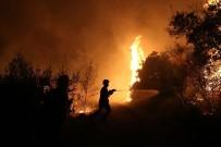 İTFAİYE ARACI - Yunanistan'daki Orman Yangını Büyüyor