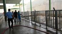 KURBANLIK HAYVAN - İzmit'te Kurbanlıklar Pazara İniyor