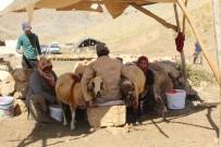 KEÇİ - Küçükbaş Hayvan Yetiştiricilerine Süt Kovası Dağıtıldı