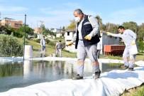 SALACAK - Mersin'de Haşere İle Mücadele Çalışmaları Sürüyor