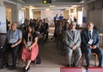 ÇEK CUMHURIYETI - Samsun'da 'Girişimciler İçin TRIZ' Projesi