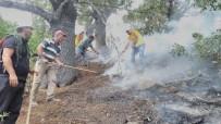 MUNZUR VADİSİ - Tunceli'deki Orman Yangınları Tamamen Kontrol Altına Alındı