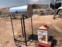 SOKAK HAYVANLARI - Belediyeden Çöp Arıtma Tesislerinde Sokak Hayvanları İçin Özel Beslenme Sistemi
