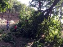 BEYTÜŞŞEBAP - Beytüşşebap'ta Şiddetli Yağmur Hayatı Olumsuz Etkiledi