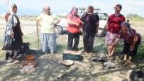 İĞDE - Burhaniye'de Kursiyer Çocuklar Piknikte Buluştu