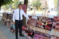 TÜP PATLADI - Depremde Eşini Ve Oğlunu Kaybetti Açıklaması Her Yıl Sergi Açıyor