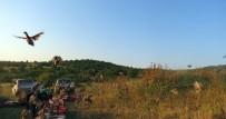 BARAJ GÖLETİ - Edirne'de 2 Bin 500 Sülün Ve Keklik Doğaya Salındı