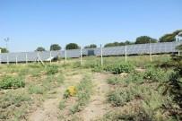 Güneş Enerjisi Sayesinde 200 Bin TL Tasarruf