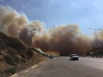 İzmir'de makilik yangını giderek büyüyor!