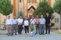 TRAFIK KAZASı - Kaza Geçiren Gazeteci Güneş'e Geçmiş Olsun Ziyareti