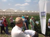 YÜKSEK LISANS - MAY Tohum Tarım Sektöründe Ar-Ge'ye En Çok Yatırımı Yapan Firma