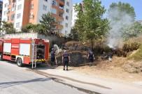 YANGINA MÜDAHALE - Sinop'ta Ot Yangını